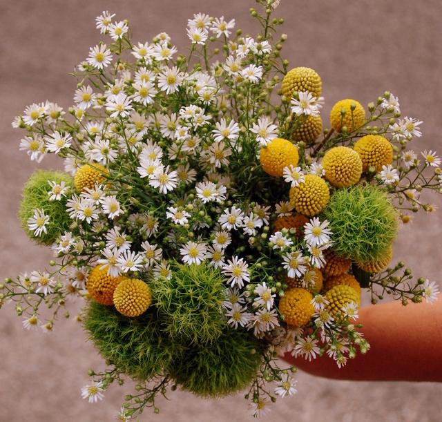 ramo novia flor silvestre